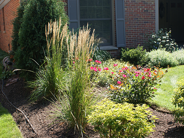 Together, we'll make the right plant choices for your home, including Perennials, Annuals, Trees, Shrubs, Turf, and customized Gardens.